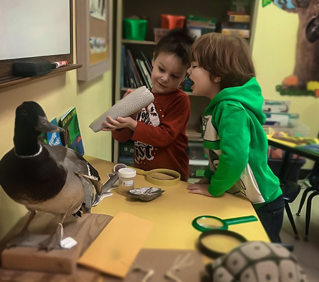 2 small children playing with and learning about elements of nature in a classroom