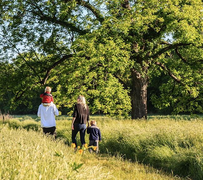 A family walking across a trail