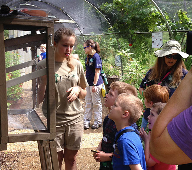 Volunteer teaching kids about the butterfly house